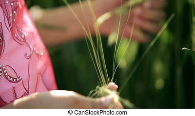 Little girl child fingering in hands a green ears of wheat close-up