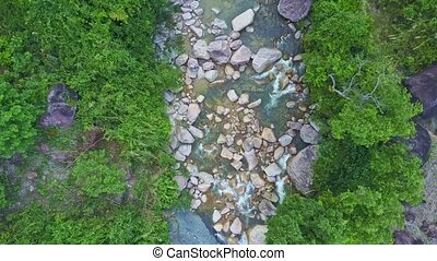 Camera Moves over Stream with Trees Reflected in Water -...