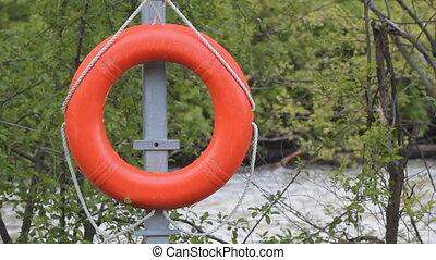 Lifesaver ring.