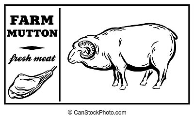 Label of meat products. Horse meat. Vector illustration