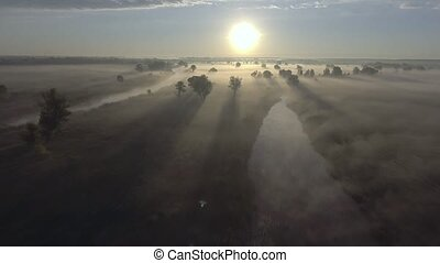 Aerial sunrise with fog at the tree tops in the rural...