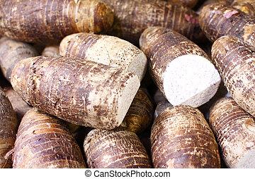Taro root - Pile of fresh Taro root.