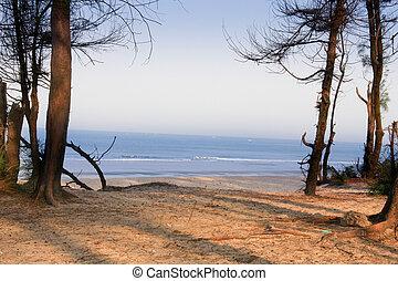 Morning light - Varca beach, Goa - Morning light across...