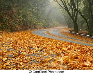 Decorate the road side - The dried leaves making nice setup...