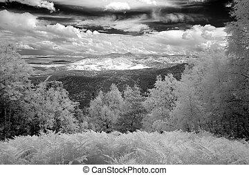 Mount Altai State Natural Biospheric Reserve, Russia.