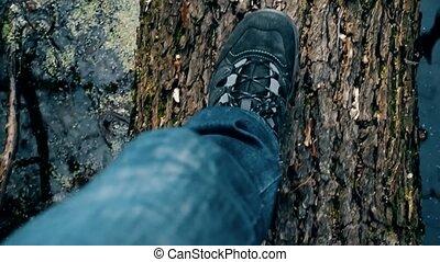 Slow motion of feet walking on fallen tree trunk in lake or river
