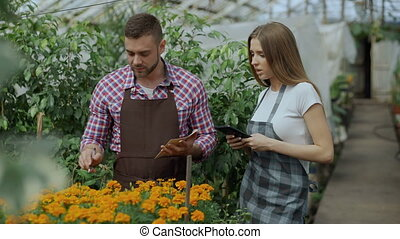 Young couple work in garden center. Attractive man cheking...