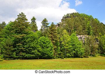 Czech-Saxony Switzerland. - Beautiful spring landscape in...