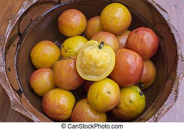 Spondias purpurea hog plum fruit - Mexican clay bowl filled...