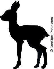 roe deer cub - silhouette of roe deer cub