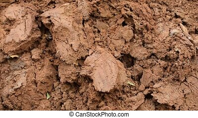 Brown clayey background. - Brown clayey background with...