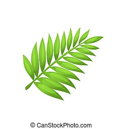 vector palm leaf - Bright cartoon palm leaf icon. Palm...