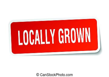 locally grown square sticker on white