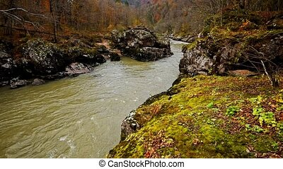 Autumn landscape with mountain river - Beautiful fall...