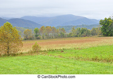 Cades Cove - A northern area of the Great Smoky Mountains...