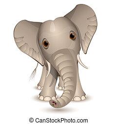 Little elephant isolated on white