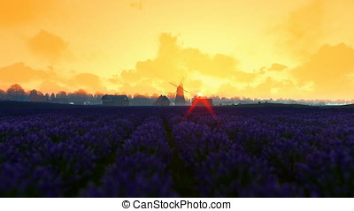 French lavender village with old windmill against morning sunrise, panning