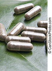 Herb tablets on a green leaf