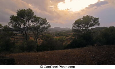 The night sky of Spain in the suburbs of Cala Mendia - Cala...