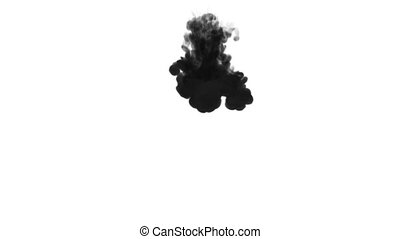 One ink flow, infusion black dye cloud or smoke, ink inject on white in slow motion. Black paint disperse in water. Inky background or smoke backdrop, for ink effects use luma matte like alpha mask