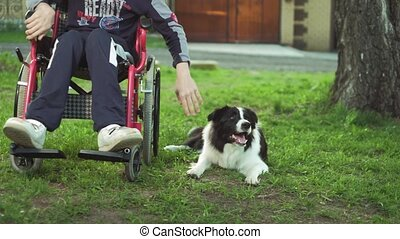 A disabled person plays with a dog, canitis therapy,...