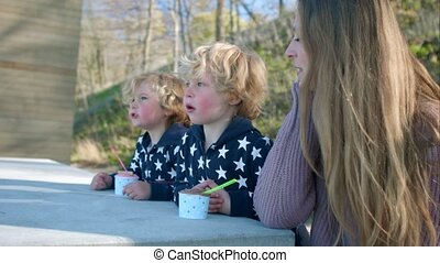 Children and mother eat an ice cream - Blonde boys and...