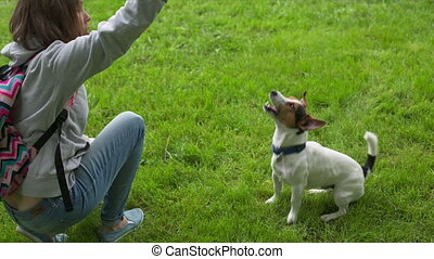 Woman playing with her dog in the park - Female train her...
