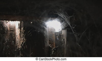 cobweb or spider web in ancient thai house window lighting