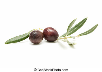 fresh olives isolated on white background