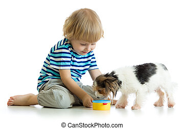 adorable boy feeding a puppy