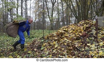 man worker throw leaves out of bag into large heap compost....