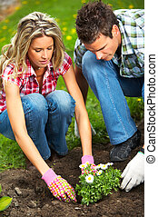 couple planting flowers - Young love couple smiling planting...