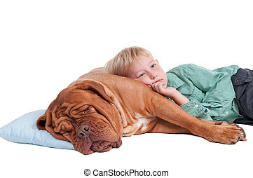 Boy is going to sleep - Little boy lying on a big dogue de...