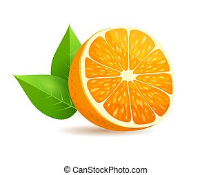 Sliced in Half Orange with Leaves Realistic Vector - Sliced...
