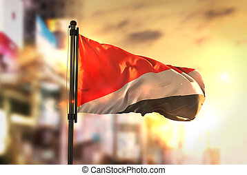 Principality of Sealand Flag Against City Blurred Background...