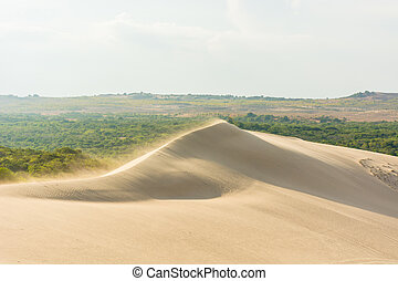 White sand dunes at, Mui Ne, Vietnam