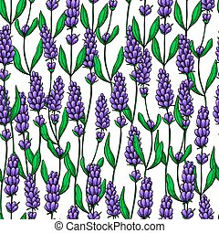 Lavender vector drawing seamless pattern. Isolated wild...