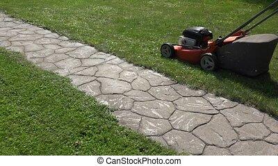 female gardener woman push mower cut grass near stone cobbled path.