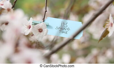Its Spring Time creative concept. - Spring Time....