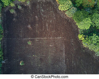 Cultivated agriculture brown field