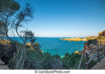 Plants and blue sea - Costa Paradiso in spring, Sardinia