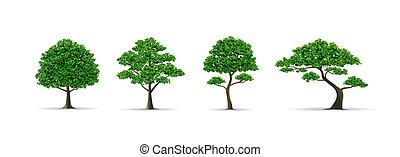 tree set realistic vector illustration - trees and leaf set...