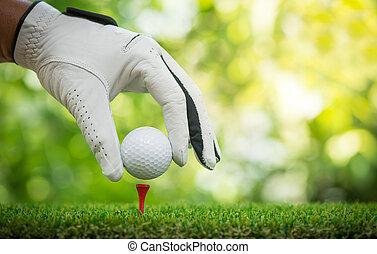 placing ball on tee - golf players hand placing ball on tee