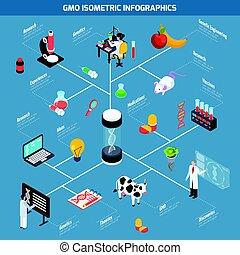 GMO Isometric Infographics - GMO isometric infographics...