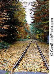 railroad tracks in the fall - Railroad tracks in an autumn...