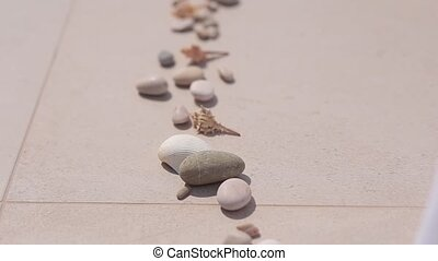 Sea pebbles and shells lined up in a row on the tile.