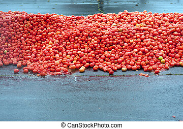 Hundreds Of Tomatos Piled High For Food Fight At Event