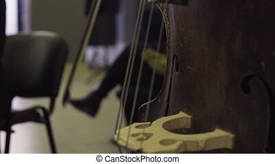 Musician playing contrabass, classic music - Close-up of...