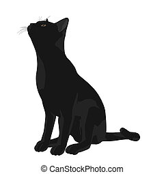 Cat Illustration - Black cat  on a white background