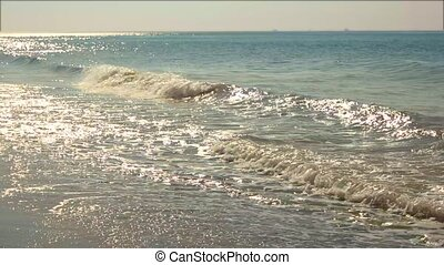 Sea shore. Waves curl to shore. Beautiful landscape. Hot...